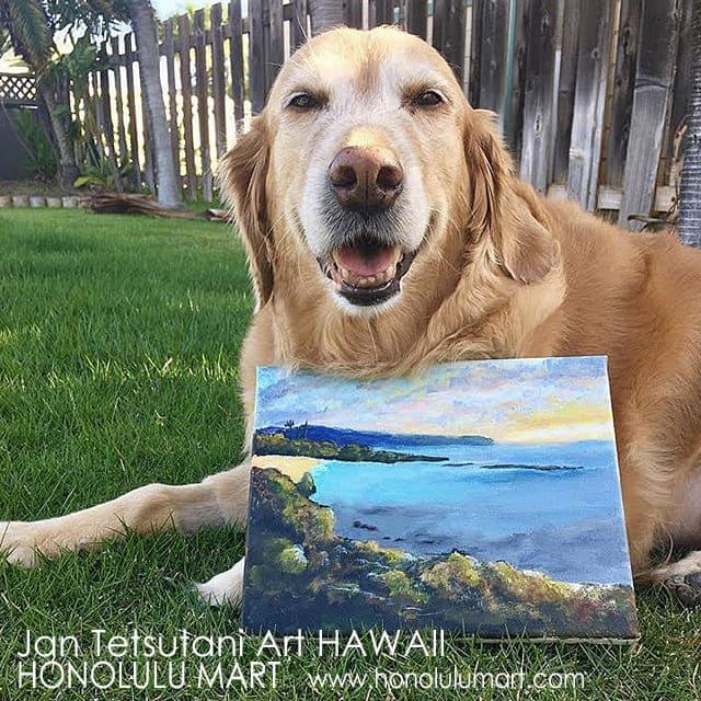 ハワイのJan Tetsutaniの愛犬サニーと絵画の写真
